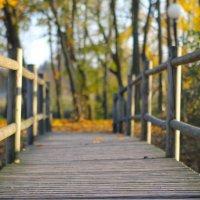 мостик в осень :: Артем Воронков