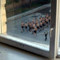 Подглядываю за соседями... ) :: Юлия Варик