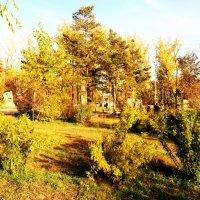 Парк Одора, Чита :: Константин Шептунов