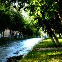 После дождя :: Сергей Куропятник