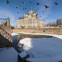 Весна на Карповке :: Alexander Roschin