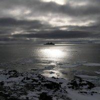 Арктика, лето :: Андрей Чепурнов