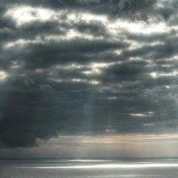 утренний свет :: Николай Ковтун