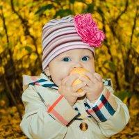 на желтых листьях :: Tatiana Treide