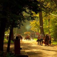 солнечный парк :: Татьяна Смагина