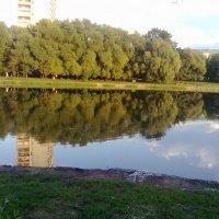 Берег озера :: Екатерина Курицына