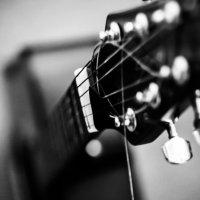 guitar :: Евгений Мулин