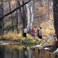В заколдованном лесу. :: Елизавета Успенская