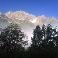 Туман :: Ольга Рябова