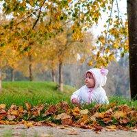 Первая осень .... :: Сергей Мясников