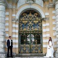 Свадебная фотосъемка. :: Anna Groshikova