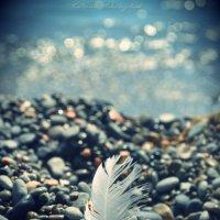 Дыхание жизни :: Екатерина Николайчук