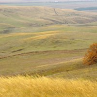 Осенний этюд #2831 :: Andrey Veretennikov