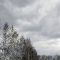 Апрельское настроение :: Pavel Kravchenko