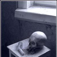Натюрморт. :: Mr Silence