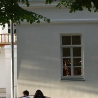 голубки :: Дмитрий Потапов