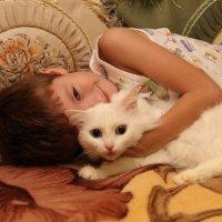 два кота :: Алексей Бойко