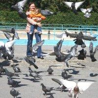 любовь и голуби :: станислав заречанский