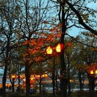 Вечер в парке Горького :: ID@ Cyber.net