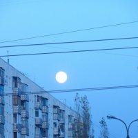 город :: Алексей Воропаев