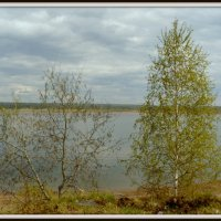 Енисей :: Вячеслав Завражнов