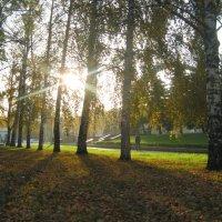 осенние солнышко :: Катерина Коханова