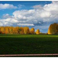 Осеннее настроение :: Dmitry Shashurin