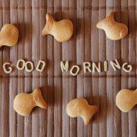 Доброе утро :: Анастасия Харченко