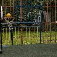 Спортивное мероприятие :: Филипп Дмитриев