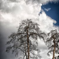 Непогода :: Юлий Иванов