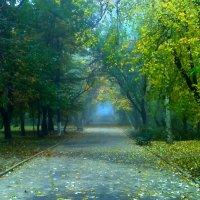 В Херсоне осень :: Владислав Положай