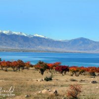 Озеро Иссык-Куль осенью :: Roman Arnold