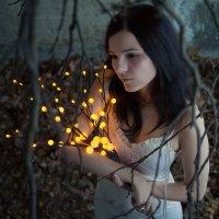 Мёртвые листья :: Анна Анхен
