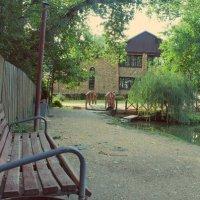 Прогулка по парку :: Дарья Норманских