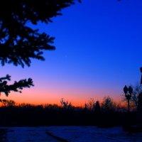 Морозное утро :: Егор Петров