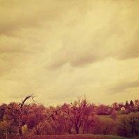 Прекрассное небо.. :: Анастасія Грабенко