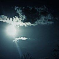 Солнце :: Анастасія Грабенко