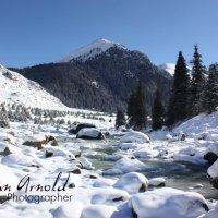 Зимой на Арашане :: Roman Arnold