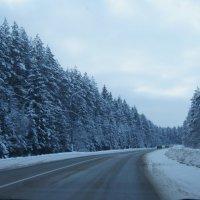 Зима.... :: Анастасия Сергиенко