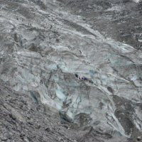 Ледник Фокса :: Raya Z