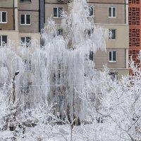 Последний день зимы :: Олег Зак