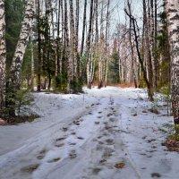 Гаснут снеги :: Юрий