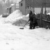 Снег идёт. :: Александр Ломов