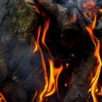 Огонь :: Ольга Семенова
