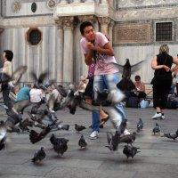 Голуби на пл. Сан-Марко.Венеция. :: Лидия кутузова