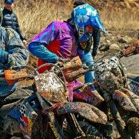 Танки грязи не боятся-2 :: Boris Khershberg