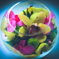цветочный коктейль :: Тася Тыжфотографиня