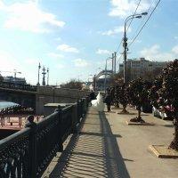 Прогулка на двоих :: Владимир Прокофьев