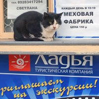 Турбюро :: Фёдор Юдин