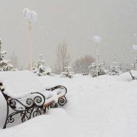 Снегопад. Скамейка :: Андрей Гомонов